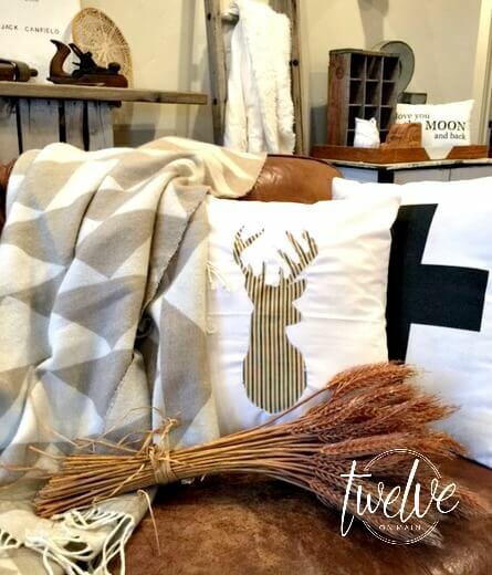 DIY Fall Pillows With My Way Applique