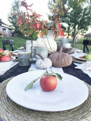 outdoor-fall-tablescape-17
