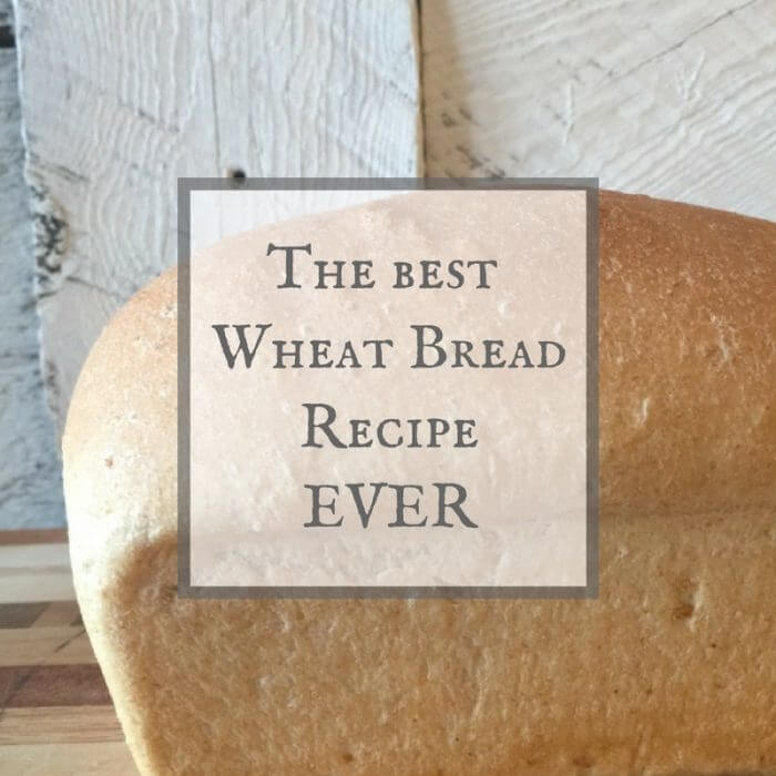 How to Make Wheat Bread That is Easy and Delicious