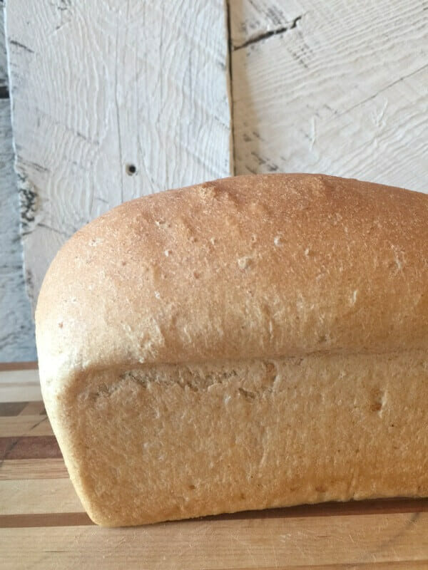 Oh my gosh, I could eat this whole thing. This is the best wheat bread recipe ever!