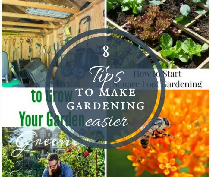 Do you love to garden? Want some helpful tips? I have 8 tips to make gardening easier this year! Check them out and enjoy your gardening!