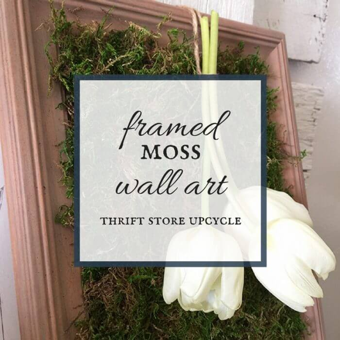 Framed Moss Wall Decor | Thrift Store Challenge