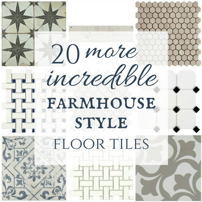 What a great collection of modern farmhouse tiles! I love the painted tiles, and those mosaic tiles are beautiful too! You have to see how they look in her laundry room!