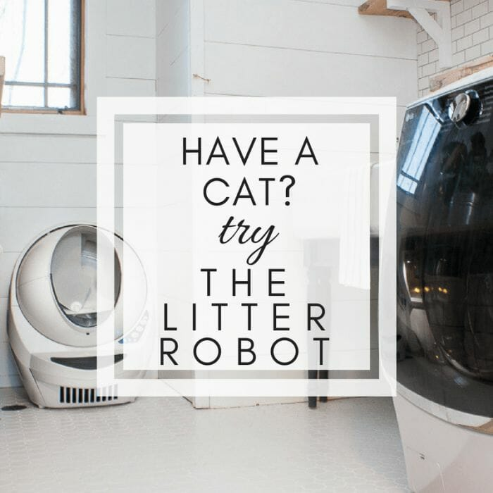 Litter Robot Review   Why It Saved My Sanity