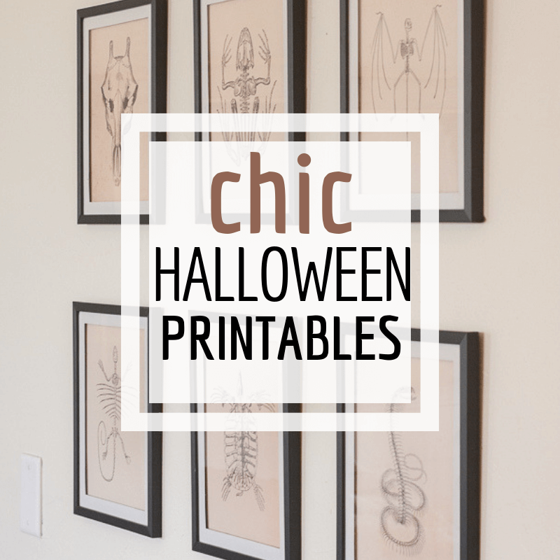 Super Chic and Stylish Halloween Printables!  Get the Whole Set Now!