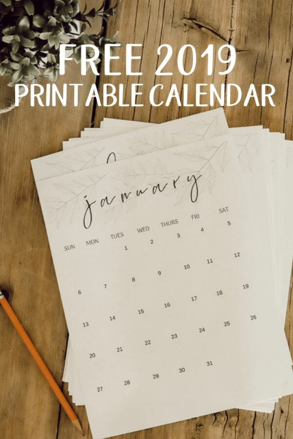 Get your life organized, or simply know what day it is with this adorable 2019 FREE printable monthly calendar!  Its perfect for your kitchen or office!