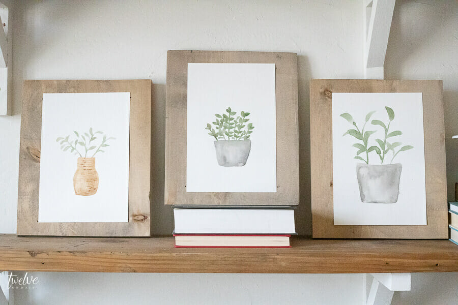 Set of 3 FREE Watercolor plant printables available here!