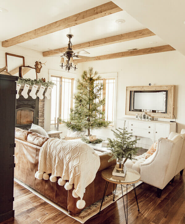 My living room at Christmas. Check out my holiday home, complete with some amazing things!