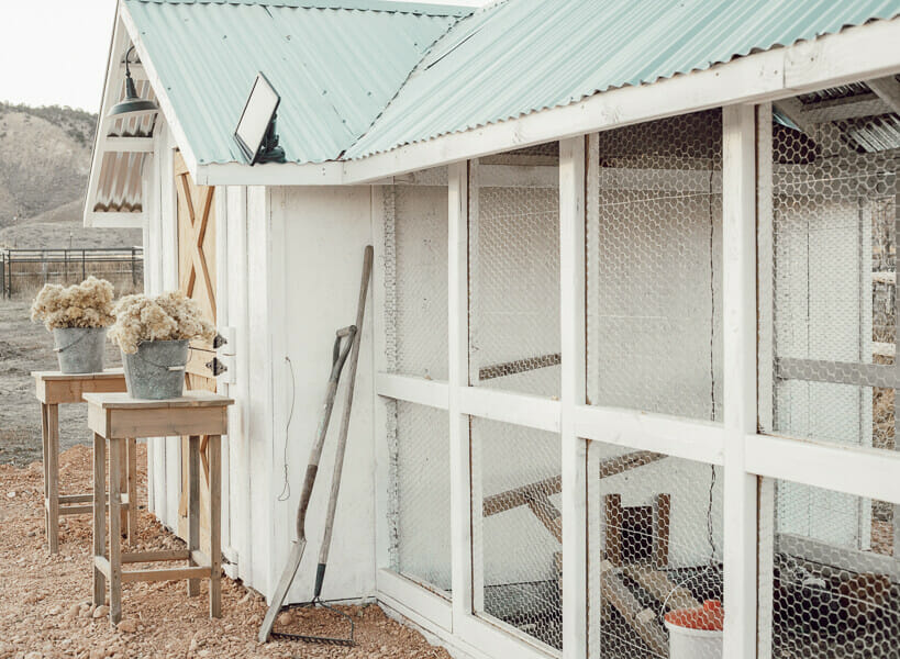 Chicken coop DIY ideas that will help you create the perfect home for your chickens.