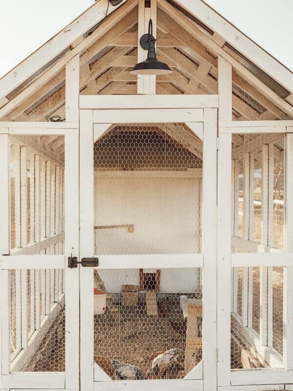 A gorgeous chicken coop design that will have you running to the tractor store to purchase some chickens!