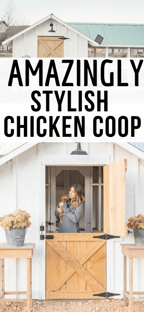 Check out this amazing chicken coop! Its full of style and functionality. The hand made dutch door opens to a storage area, which leads to the actual coop. Off to the side, is a large chicken run full of happy chickens! This was a very affordable chicken coop, using repurposed items, a solar barn light, and its completely predator proof!