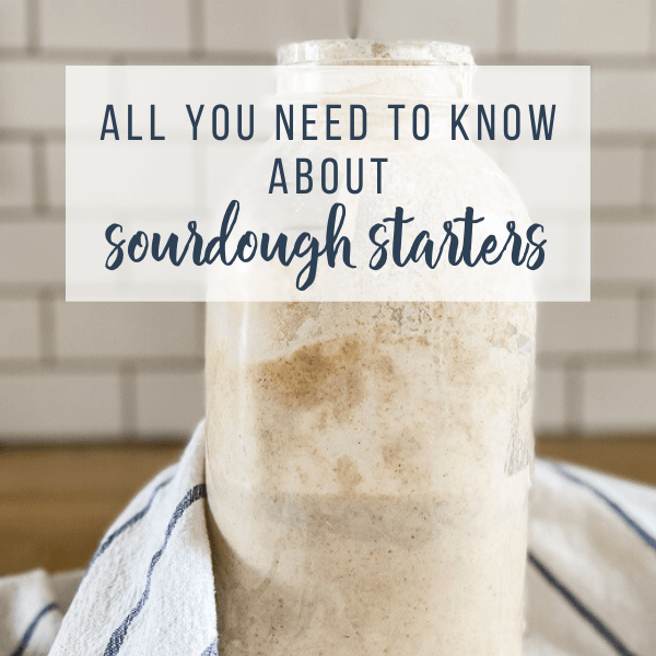 Everything You Need to Know About Sourdough and Sourdough Starters