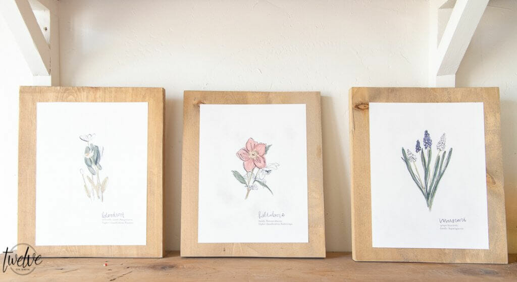 Get these free spring printables right now! These botanical illustration printables are FREE right now as well as exclusive access to my printable library and all the printables in it!