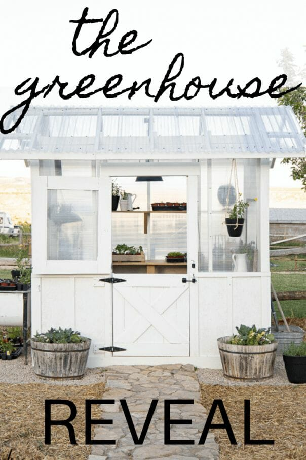 We built our own greenhouse! Our DIY greenhouse design is functional, stylish, and the most amazing place! If you need me, I will be hanging out inside.