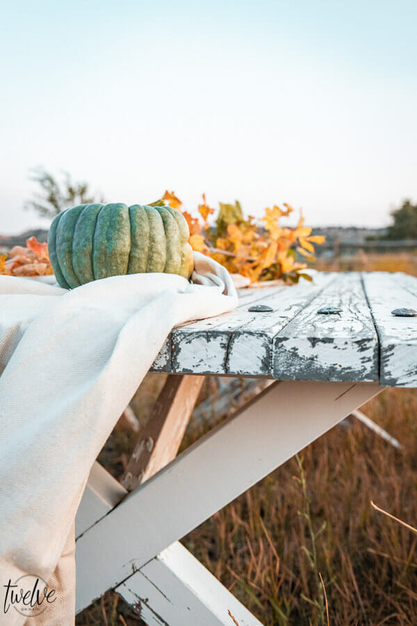 Fall dining in a field with canvas drop cloths as a table runner, fall leaves, real pumpkins all outside.
