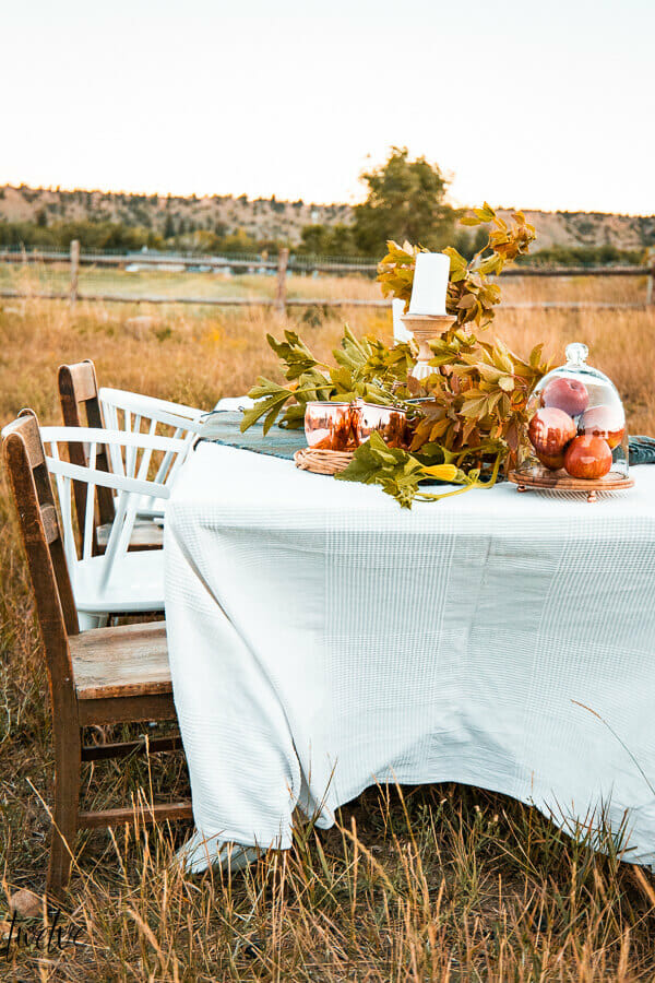 Outdoor fall entertaining, with simple fall table decor, set outside with a tall grass field as a backdrop.